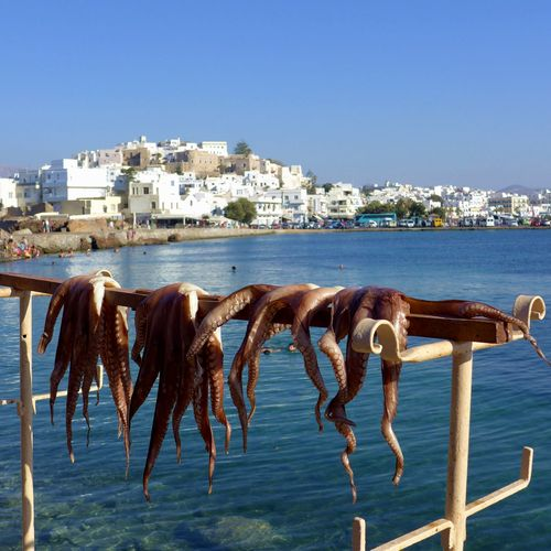 Paysage de Naxos