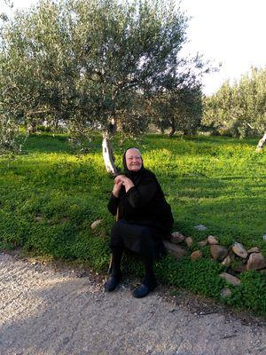 Echanges chaleureux avec les locaux pendant le voyage en Crète de l'Est