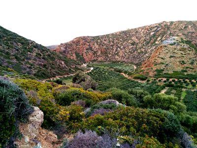 Randonnée en Crète de l'Est: itinéraire de Vai à Palaikastro