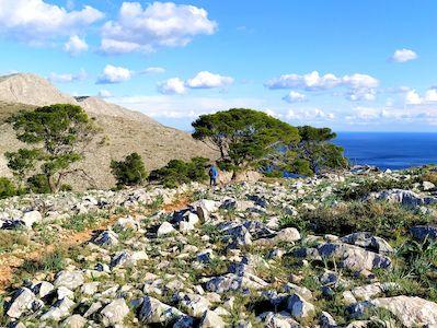 Voyage randonnée Grèce, séjour à Hydra